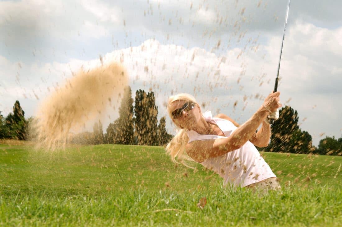 raadgevers pensioen golfdag